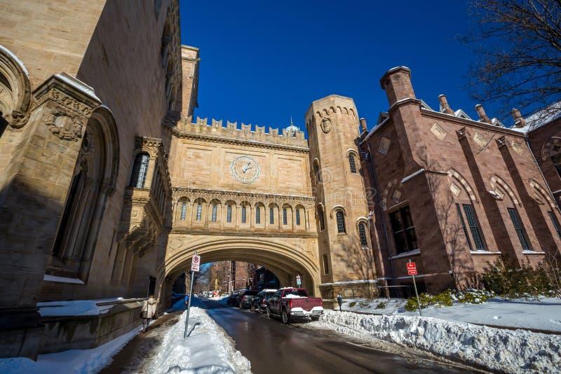 Los edificios de la Universidad de Yale en invierno después de la nieve asaltan a Linus fotografía de archivo