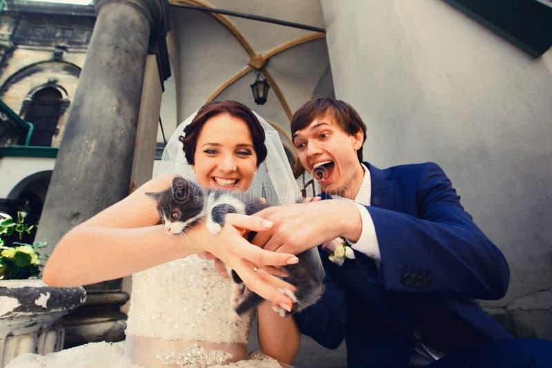 Los felices recienes casados sostienen un pequeño gatito gris que se sienta en la calle imágenes de archivo libres de regalías