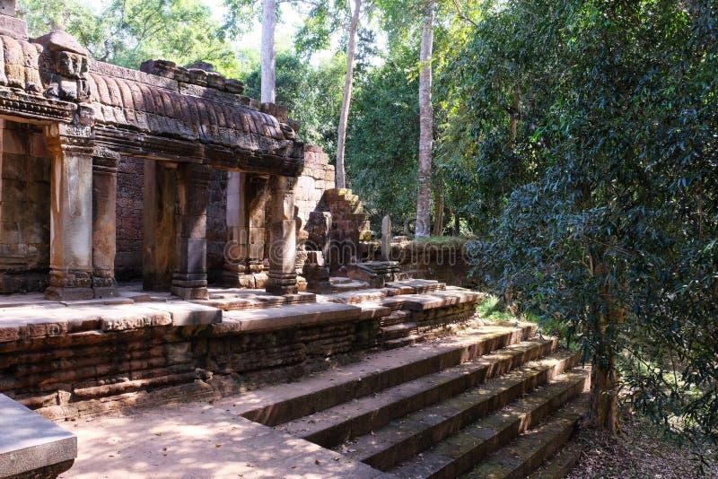 Los ficus crecen en las escaleras de un templo dilapidado antiguo Ruinas antiguas en los pasos de la piedra de la selva tropical  fotos de archivo libres de regalías