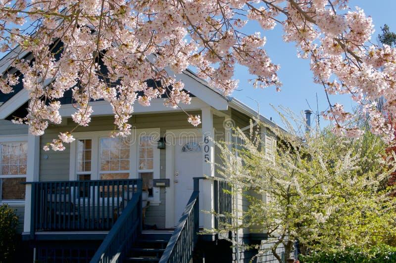 Los flores en cerezos enmarcan una casa en Moss St, Victoria A.C. imagen de archivo