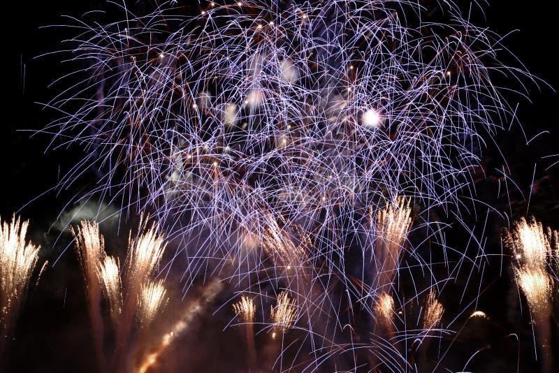 Los fuegos artificiales exhiben en la noche imágenes de archivo libres de regalías