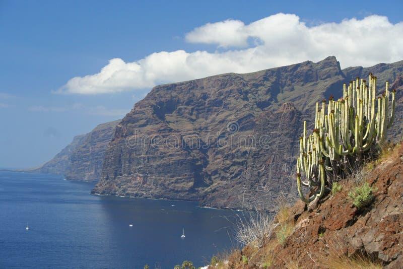 Download Los Gigantes, Tenerife, Spain Stock Photo - Image of geology, cactus: 19010494
