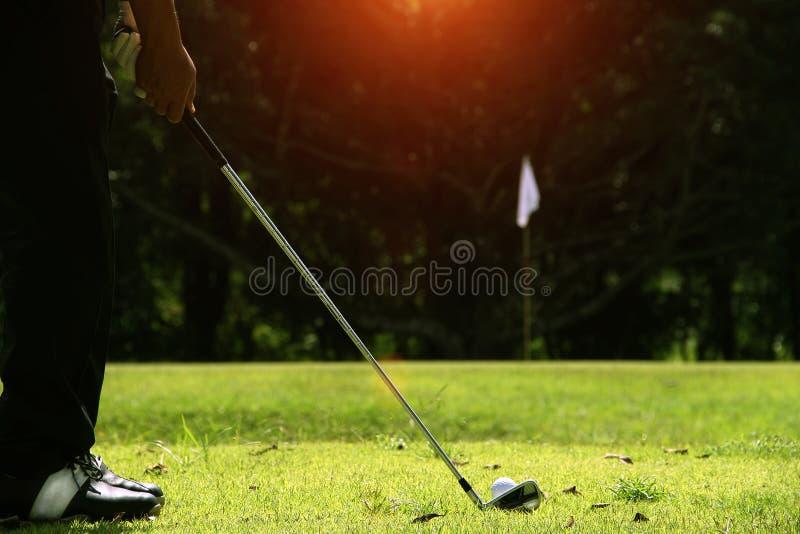 Los golfistas están jugando a golf en el campo de golf de la tarde imagen de archivo