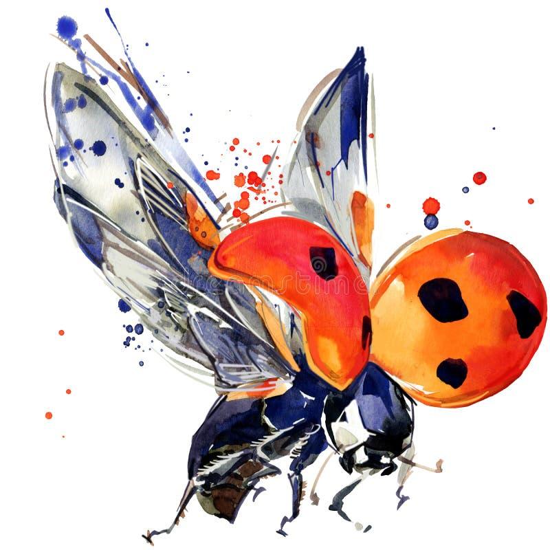 Los gráficos de la camiseta del escarabajo de mariquita, ejemplo de la mariquita con la acuarela del chapoteo texturizaron el fon ilustración del vector