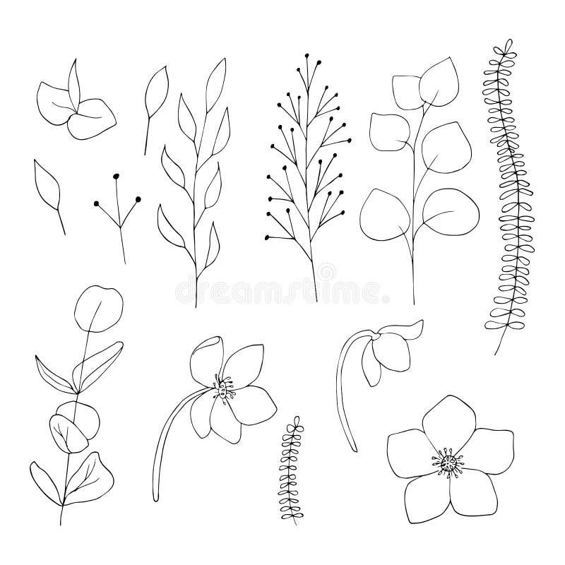Los gráficos florales del vector fijaron negro en elementos aislados el fondo blanco imágenes de archivo libres de regalías