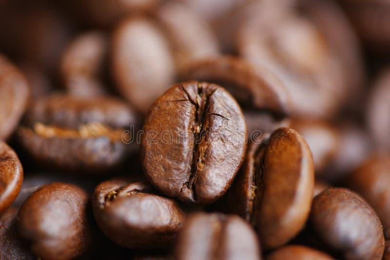 Los granos de café asados texturizan el fondo - grupo de cierre encima de los granos de café macros fotos de archivo