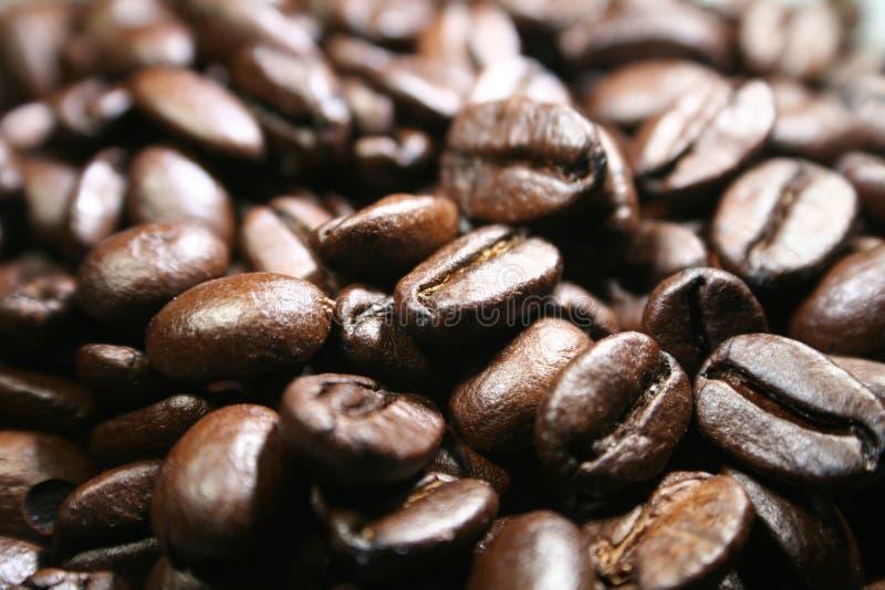 Los granos de café con macro se cierran encima de alta calidad fotografía de archivo libre de regalías