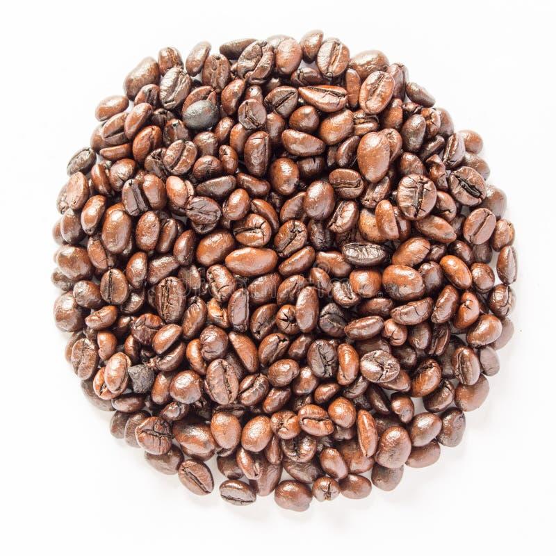 Los granos de café del círculo aislaron el fondo blanco imagen de archivo libre de regalías