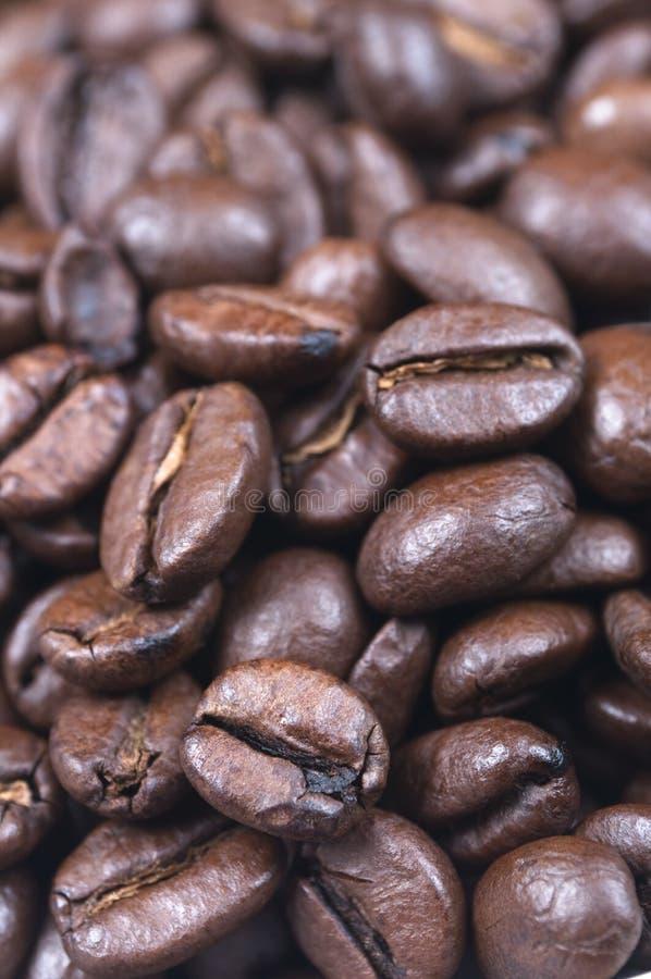 Los granos de café se cierran para arriba fotos de archivo libres de regalías