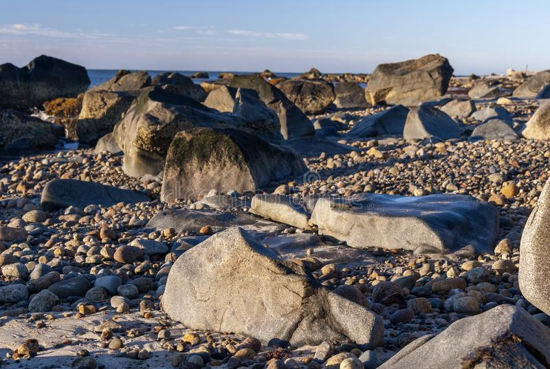 Los halcones de la marea baja aúllan playa imagen de archivo libre de regalías