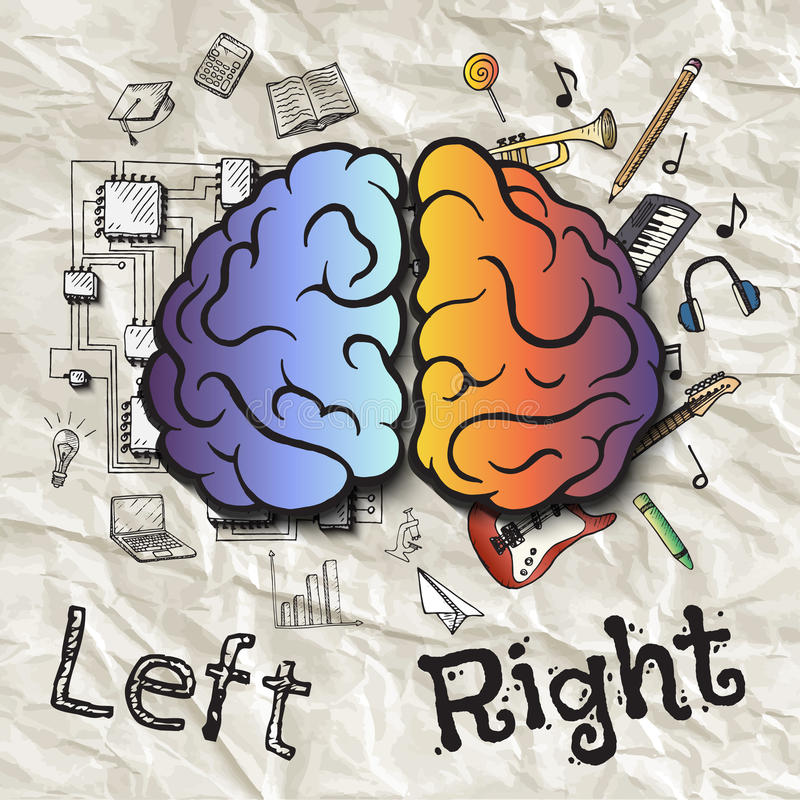 Los hemisferios izquierdos y derechos del cerebro stock de ilustración