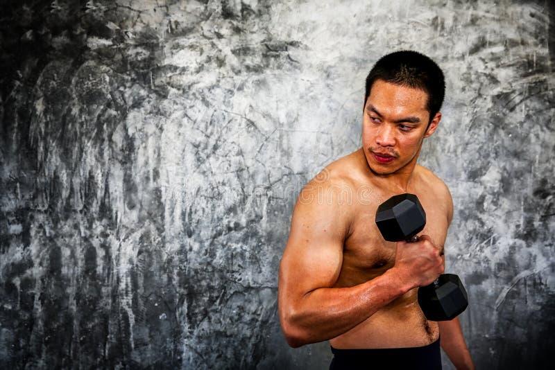 Los hombres asiáticos están jugando pesas de gimnasia para construir el músculo Hombre muscular que ejercita con pesas de gimnasi fotografía de archivo