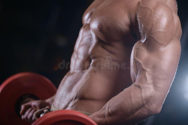Los hombres atléticos del culturista fuerte atractivo que bombean para arriba muscles con dum fotos de archivo