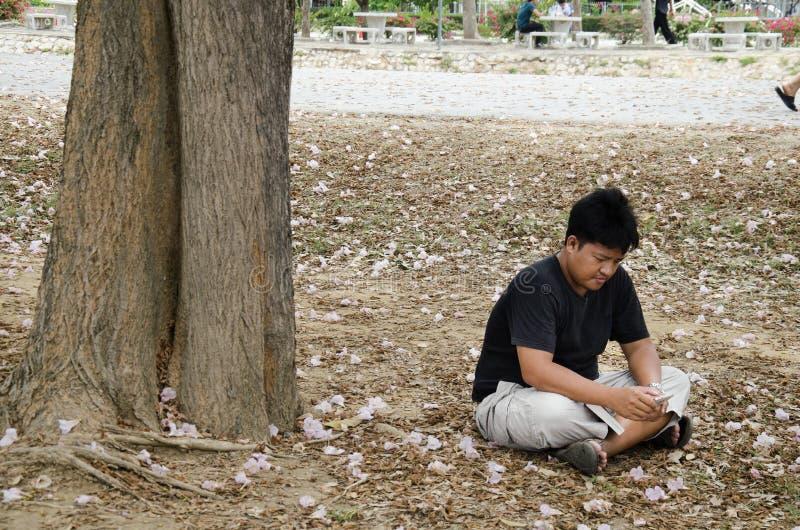 Los hombres tailandeses asiáticos se sientan en el libro del piso y de lectura debajo de árbol de trompeta rosado foto de archivo