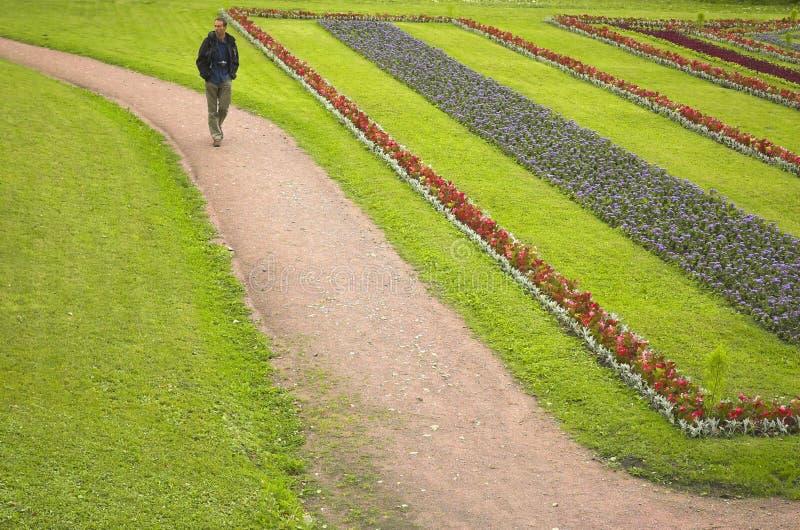 Los hombres van en un camino del parque imagen de archivo