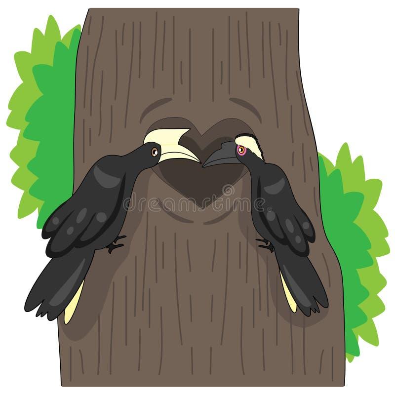 Los hornbills negros son fieles a sus compañeros stock de ilustración