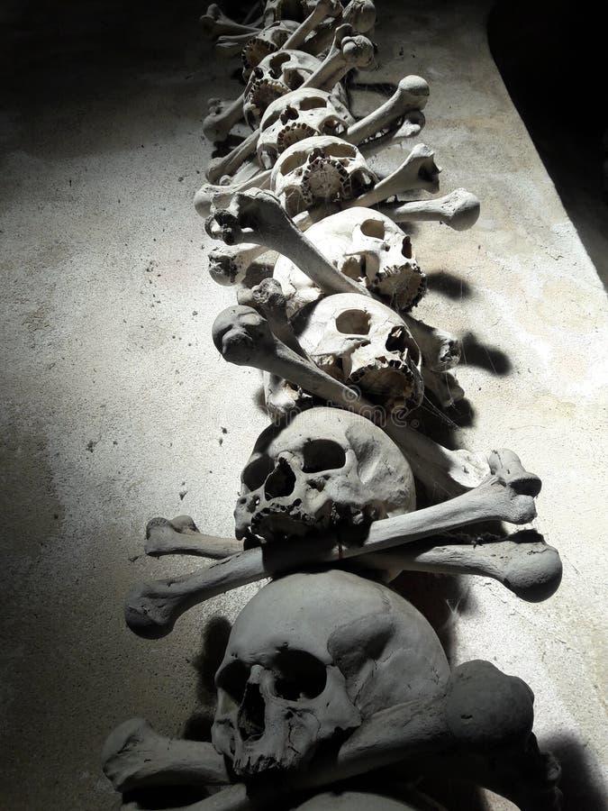 Los huesos colocaron en un osario que era un símbolo mórbido de la muerte imagen de archivo