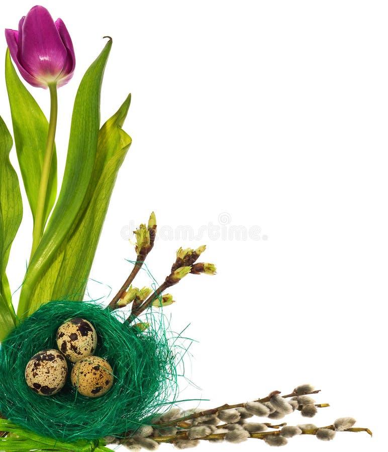 Los huevos de Pascua en pájaro verde jerarquizan con los tulipanes de las flores, amentos imagen de archivo
