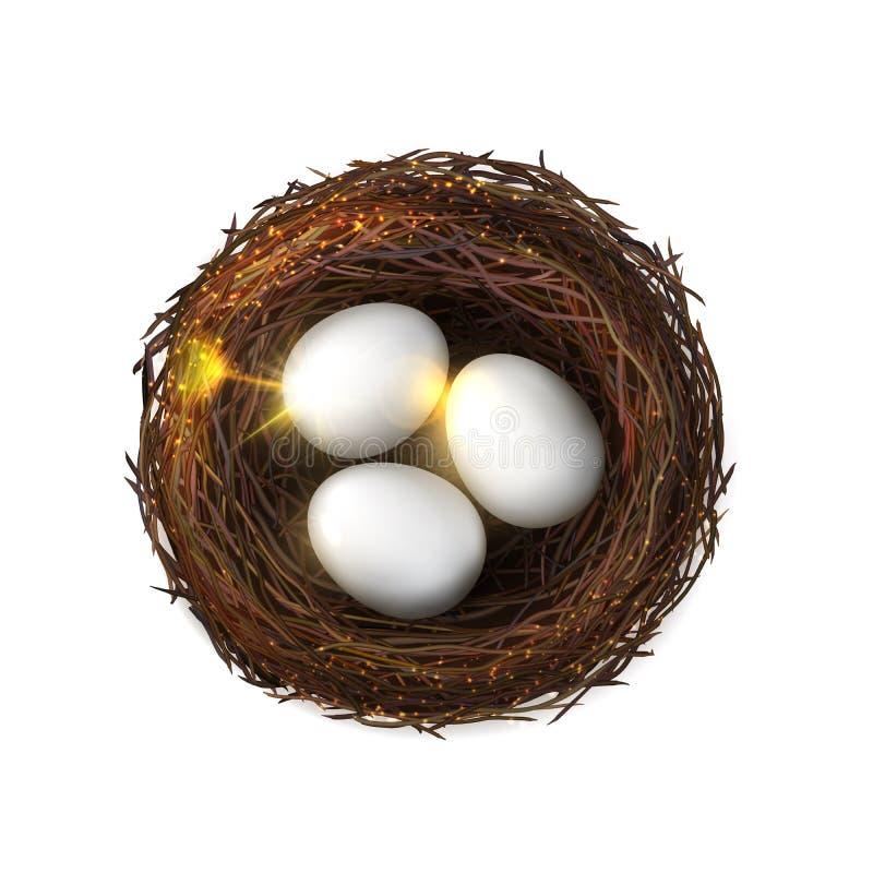 Los huevos, embrión de las aves de corral de la jerarquía del pájaro, aislado birdnest stock de ilustración