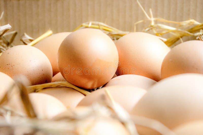 Los huevos están en cajones imagen de archivo