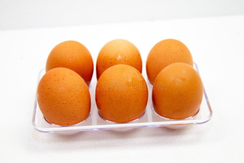los huevos marrones tienen gotitas de agua en caja plástica en el fondo blanco imagenes de archivo