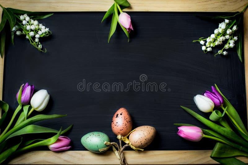 Los huevos miran al trasluz para pascua imágenes de archivo libres de regalías