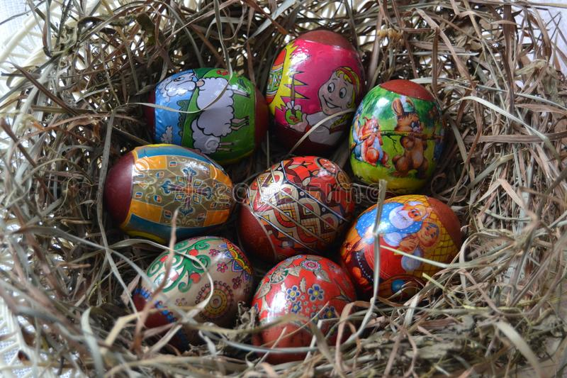 Los huevos pintados del pollo están en la jerarquía fotos de archivo
