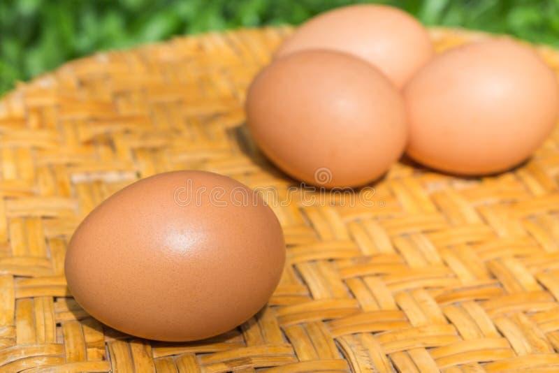 Los huevos son altos en la proteína para el desayuno, fácil ser beneficiosos al cuerpo fotografía de archivo libre de regalías
