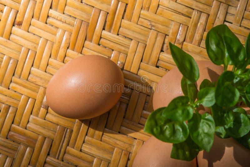 Los huevos son altos en la proteína para el desayuno, fácil ser beneficiosos al cuerpo imágenes de archivo libres de regalías