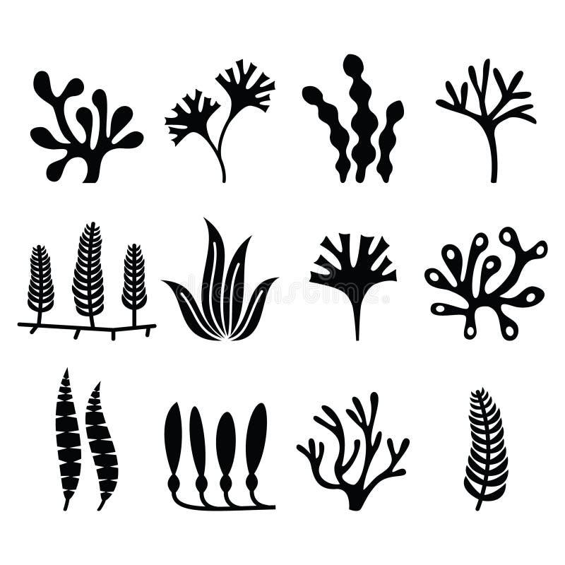 Los iconos de la alga marina fijaron - la naturaleza, concepto de las tendencias de la comida libre illustration