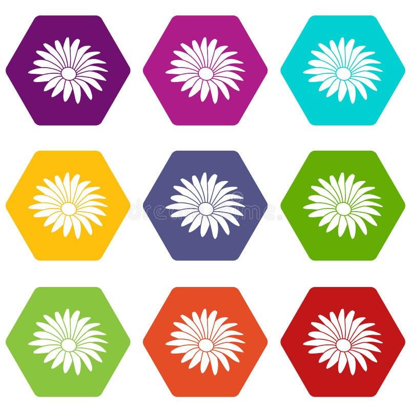 Los iconos de la flor de Gerber fijaron el vector 9 libre illustration