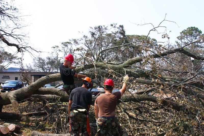 Los ingenieros civiles comienzan a quitar los árboles derribados por el huracán Katrina fotos de archivo libres de regalías