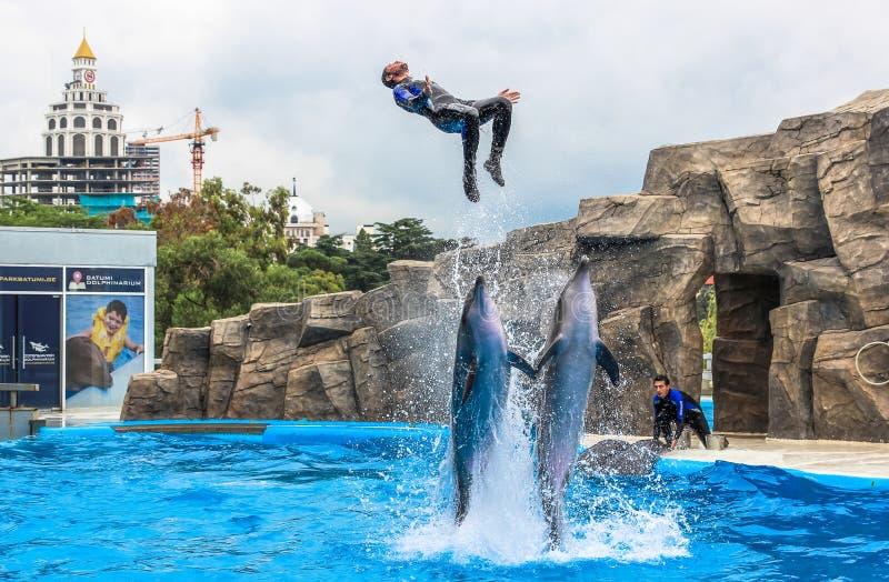 Los instructores de BATUMI, GEORGIA 9 de julio de 2015 se realizan con los delfínes entrenados en el Batumi Dolphinarium imagen de archivo