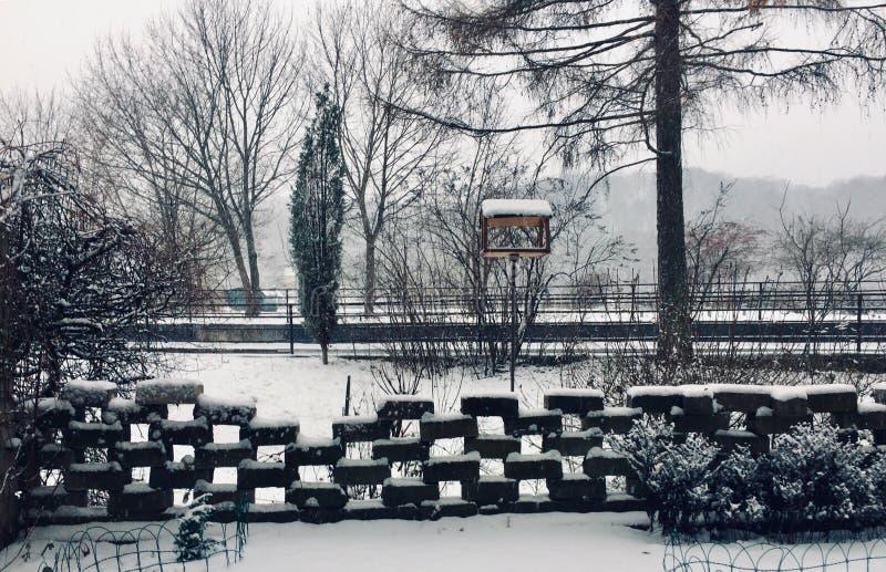 Los inviernos ajardinan de propia yarda del jardín foto de archivo