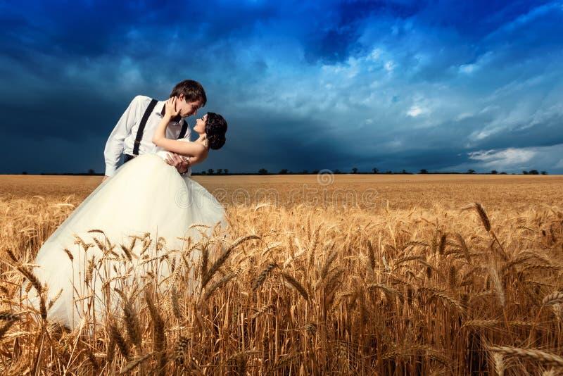 Los jóvenes juntan conseguir casados en campo de trigo imágenes de archivo libres de regalías