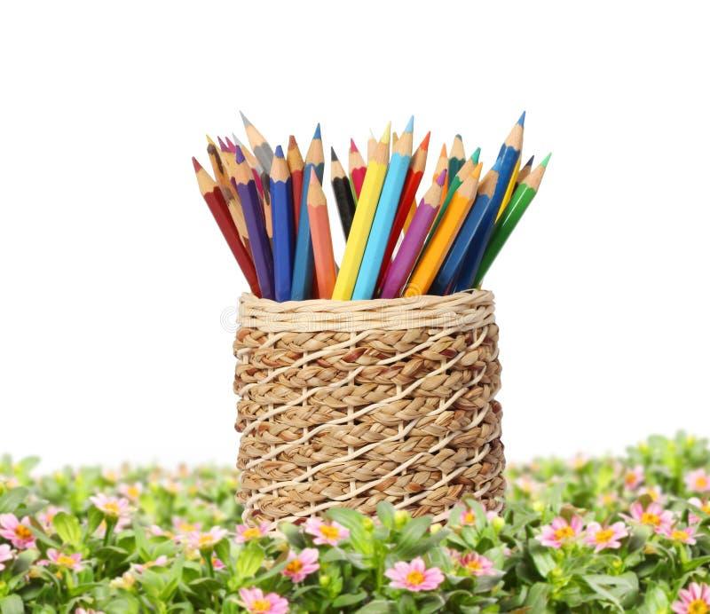 Los lápices están en jaula ilustración del vector