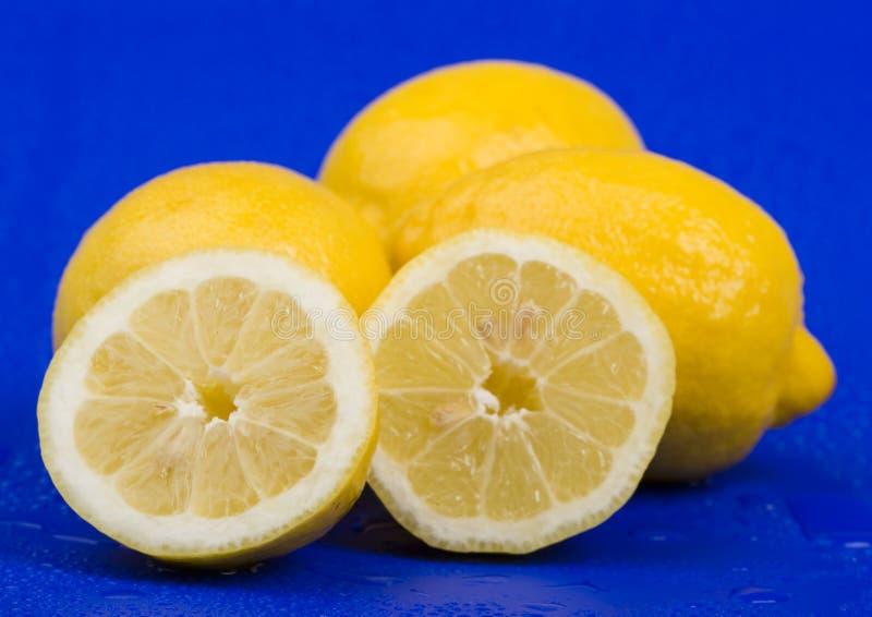 Los limones fotografía de archivo