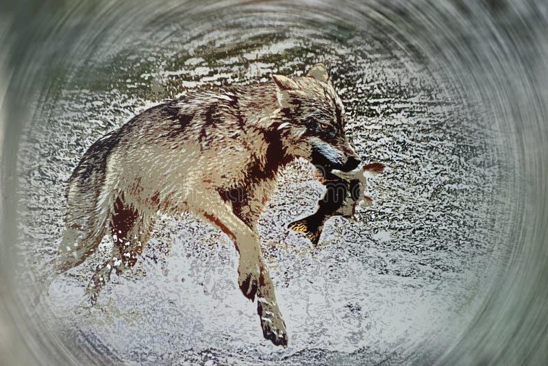Los lobos pescan también libre illustration