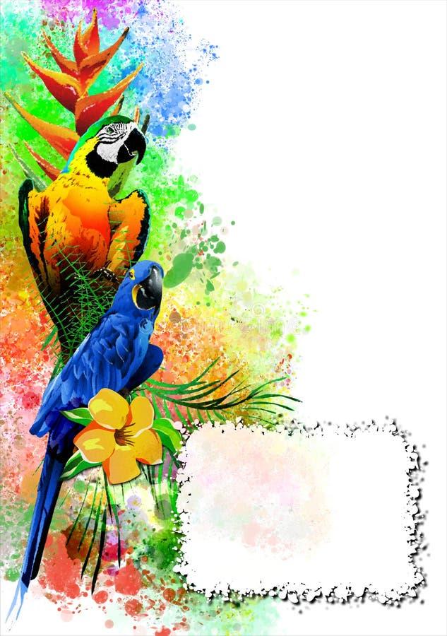 Los loros con una bandera blanca en el fondo de la pintura multicolora salpican stock de ilustración