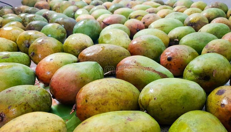 Los mangos maduros amarillos y verdosos rojizos de Alfonso agrupan en venta fotos de archivo