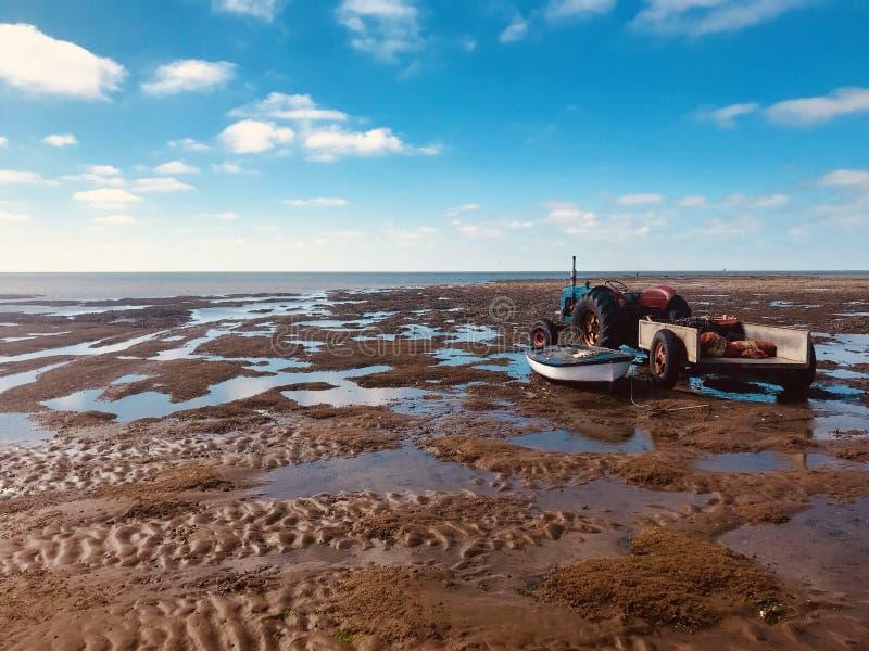 Los mejillones de los mariscos del tractor de cultivo de Hunstanton del día de fiesta del sol de la playa de la marea baja ven el fotografía de archivo