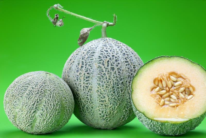 Los melones del cantalupo imagenes de archivo