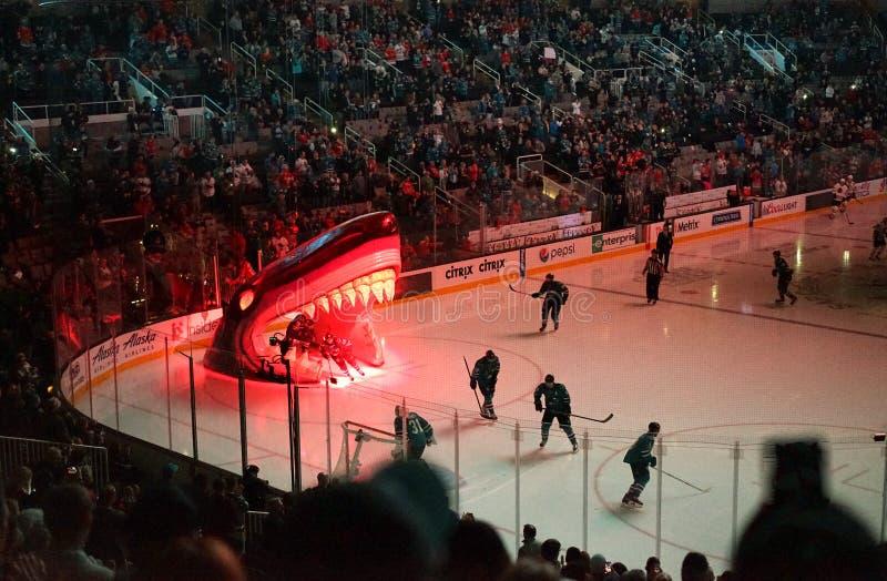 Los miembros de equipo de hockey de los tiburones toman el hielo imagen de archivo libre de regalías