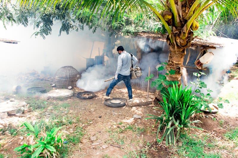 Los mosquitos de la fumigación entran en las casas hechas del portador de madera del mosquito de la matanza del virus de dengue F imágenes de archivo libres de regalías