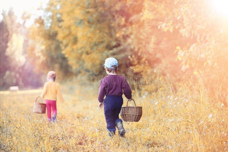 Los niños en el pueblo caminan a través del bosque y del gathe del otoño imagenes de archivo