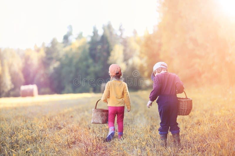 Los niños en el pueblo caminan a través del bosque y del gathe del otoño imagen de archivo
