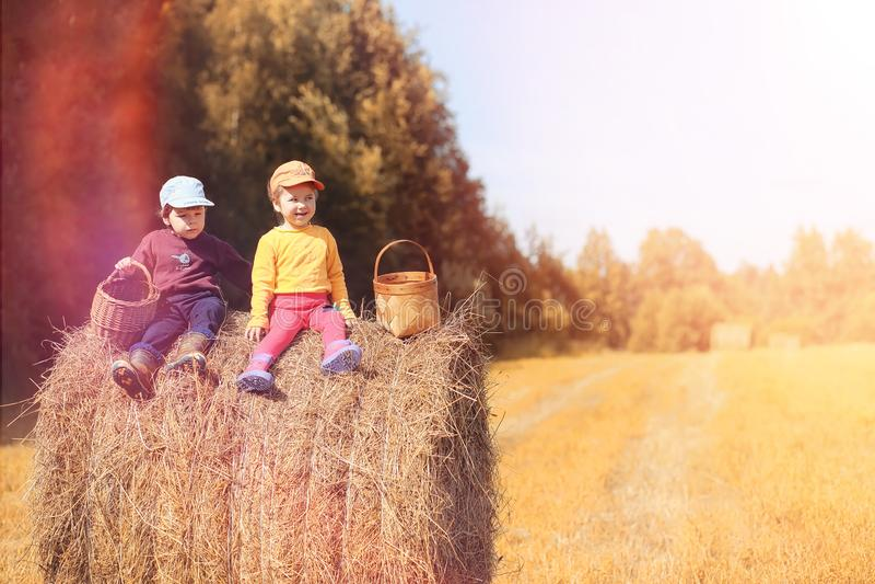 Los niños en el pueblo caminan a través del bosque y del gathe del otoño fotos de archivo