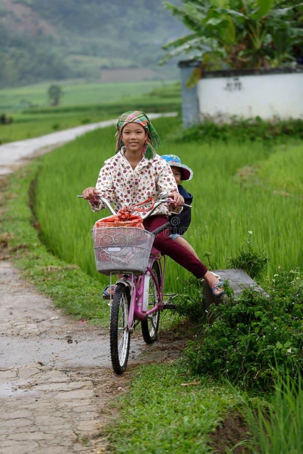 Los niños en la bici en el arroz colocan en valle del PA del Sa en Vietnam imágenes de archivo libres de regalías