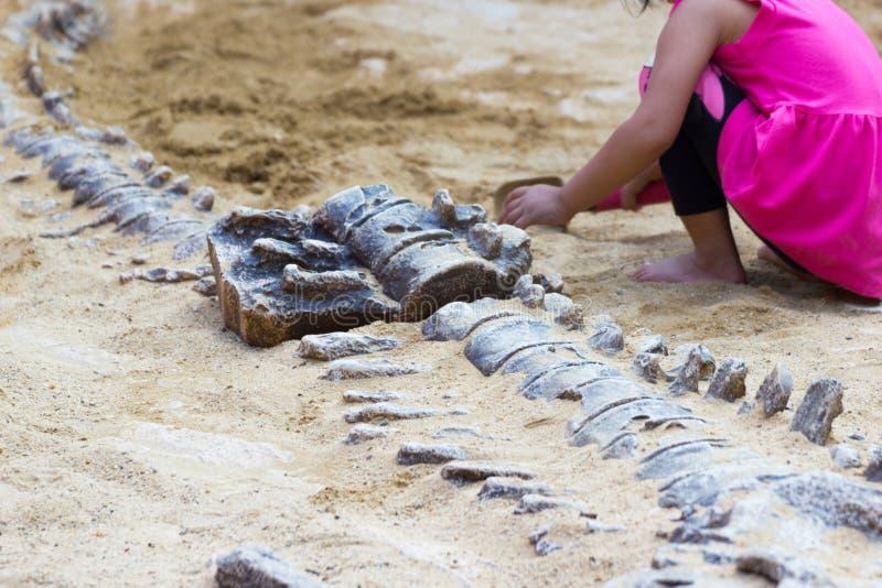 Los niños están aprendiendo el dinosaurio de la historia, excavando la simulación de los fósiles de dinosaurio imagen de archivo