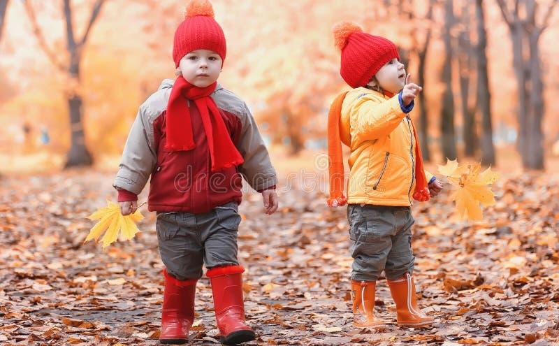 Los niños están caminando en naturaleza Los niños crepusculares están dando une vuelta fotografía de archivo libre de regalías